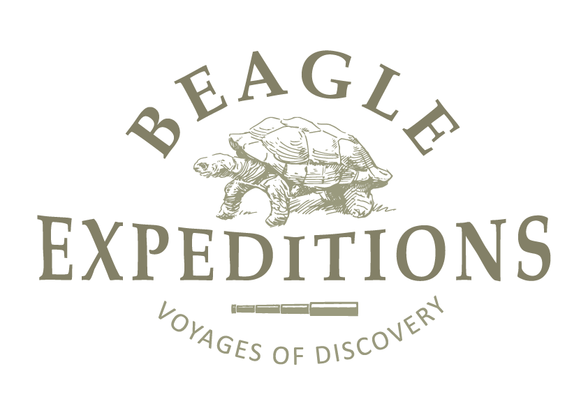 Beagle Expeditions